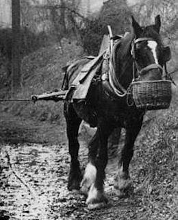 Horse pulling a boat along a muddy towpath
